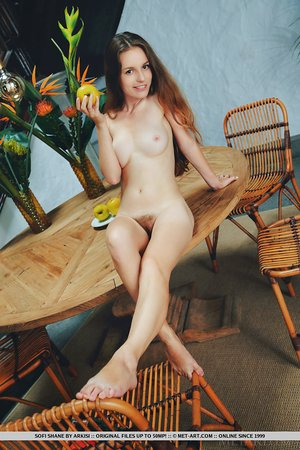 Beautiful brunette Sofi Shane with tiny tits bared spreading bare on a table